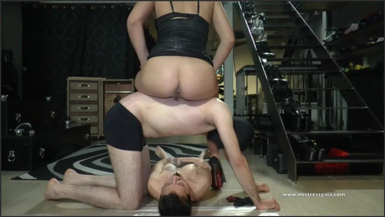 Scat Porn – Request #6589