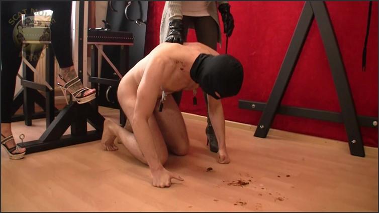 Scat Porn – Request #4598