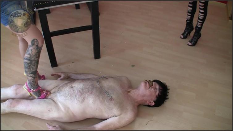 Scat Porn - Codso #4517