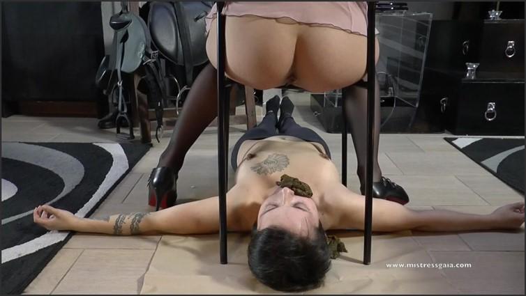 Scat Porn – Request #7330