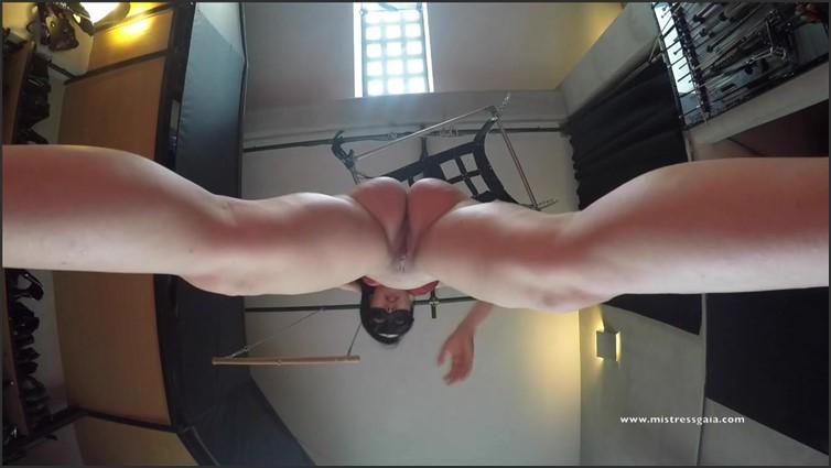 Scat Porn – Request #2656
