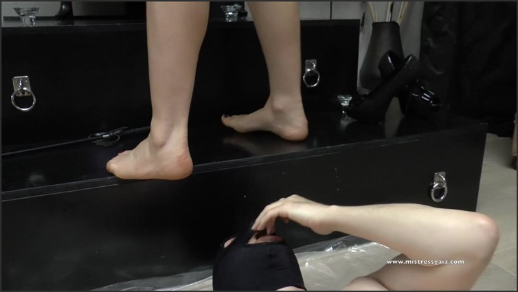 Scat Porn – Request #5558