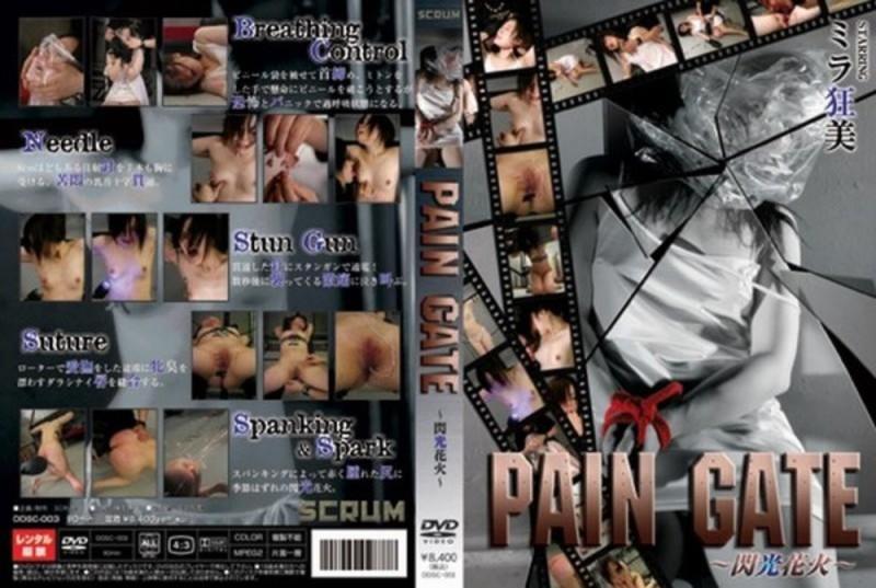 DDSC-003 PAIN GATE lampò piacè lampone PAIN GATE SM 1.01 GB