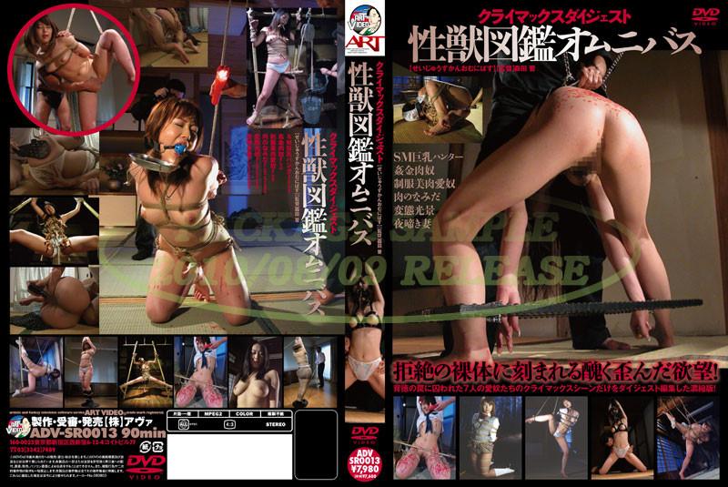 ADV-SR0013 Omnibus Climax Digest Raamat - Yoshioka Mimi, Sakura Fujiko, Kitagawa Mami, Hoshiduki Mayura, Hanai Momoka, Hoshino Biyuu